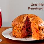 Una Mole di Panettoni Salati, il 20 maggio 2021 a Torino