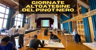 Dal 12 al 14 giugno 2021, nella splendida cornice dei paesi vitivinicoli di Egna e Montagna in Alto Adige, andranno in scena i migliori Pinot Nero d'Italia